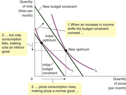 How Changes in Income Affect the Consumer's Choices- 2