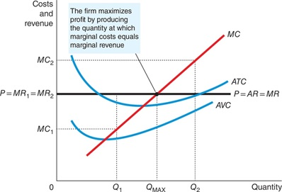 Marginal Cost Curve and Firm's Supply Decision